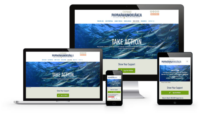Responsive Web Design Hawaii